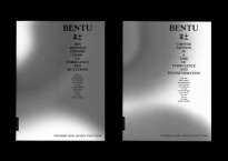 Bentu. Chinese artists in a time of turbulence and transformation